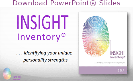 INSIGHT Inventory SELF PowerPoint Slides