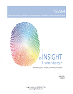 Insight Inventory Team Interpretive
